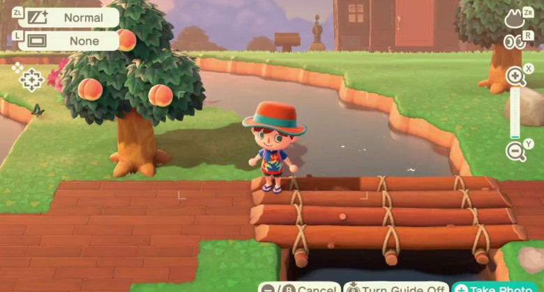 The Return of the Camera Glitch! But Animal Crossing's latest patch now makes it official